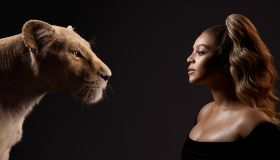 """""""The Lion King"""" character poster"""